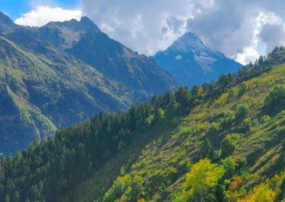 Пейзаж в Архызе