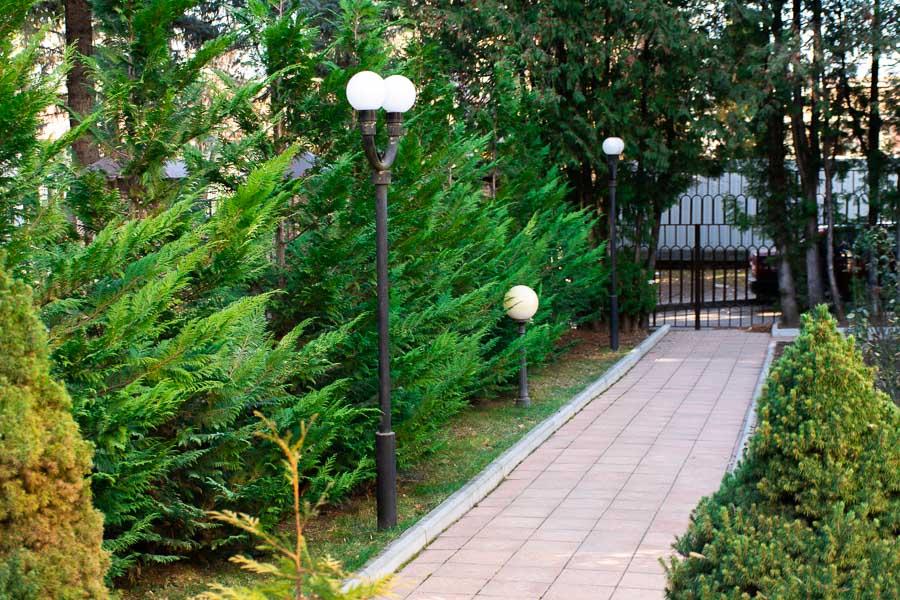 Зелёная зона санатория
