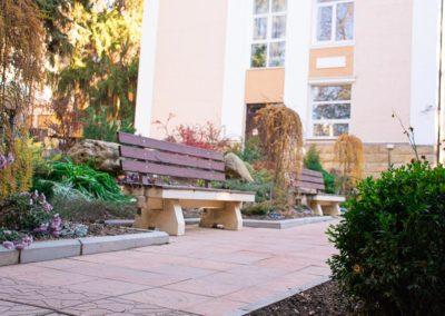 Скамейки для отдыха в красивой зелёной зоне