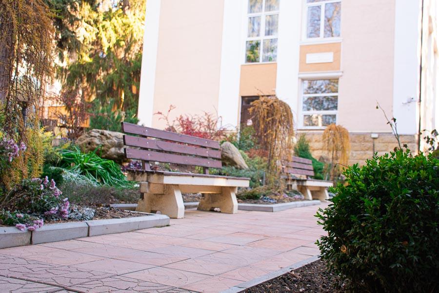 Скамейки для отдыха в красивой зелёной зоне санатория