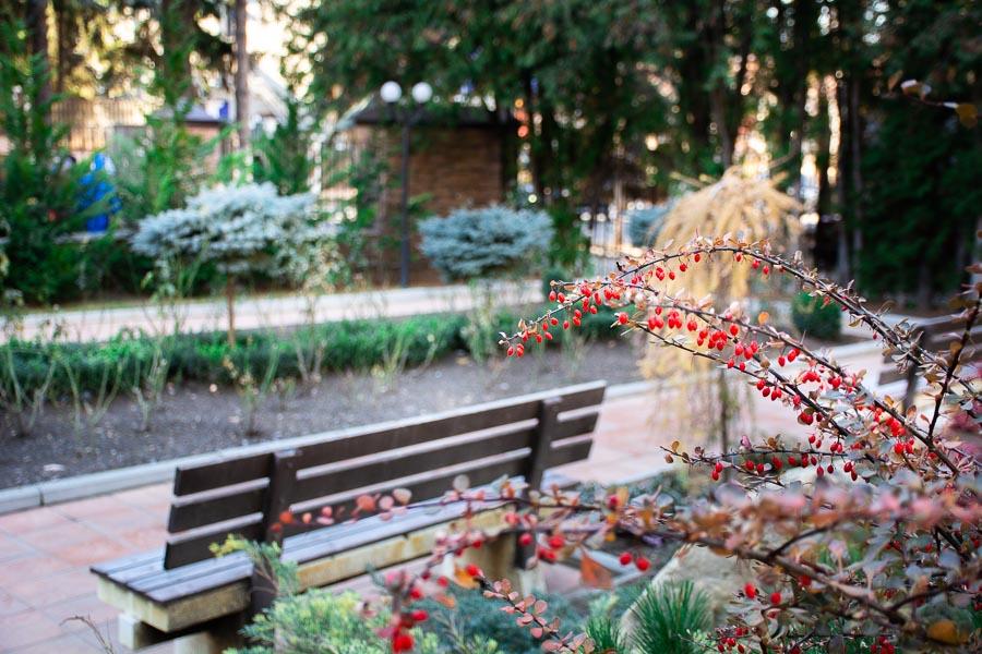 Мини-парк санатория Радуга